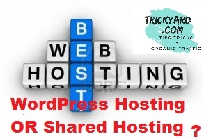 best_hosting_plan